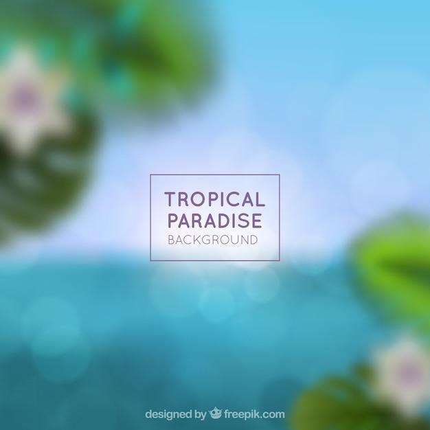 ぼやけた熱帯の楽園 無料ベクター