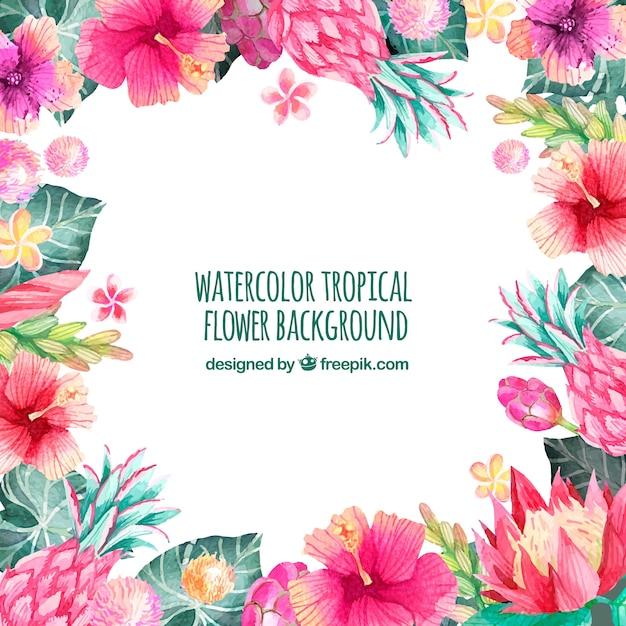 熱帯の水彩花の背景 無料ベクター