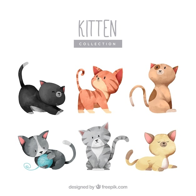 Прекрасная коллекция акварельных котят Бесплатные векторы