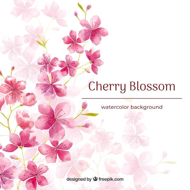 水彩スタイルの桜の背景 無料ベクター