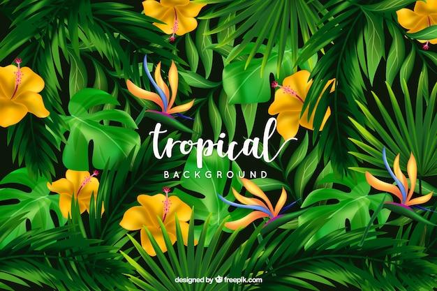 野生の花と熱帯の背景 無料ベクター