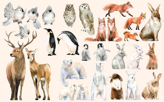 手描きの野生動物の水彩様式のセット 無料ベクター