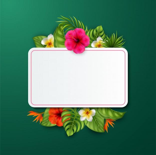 美しい花と葉と空のサイン Premiumベクター