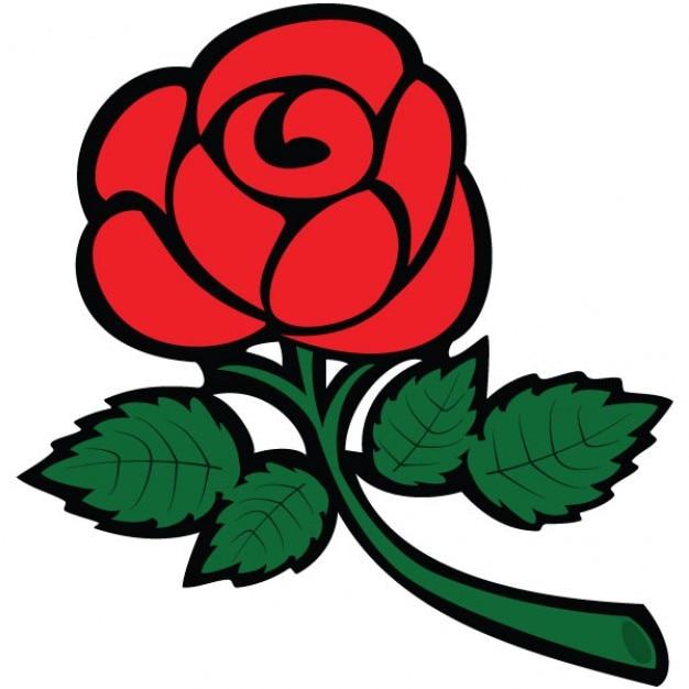 Рисунок красивая роза