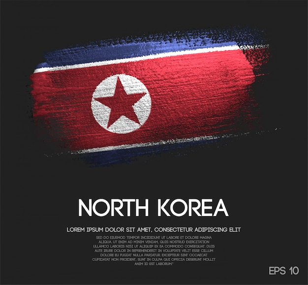 North korea flag made of glitter sparkle brush paint Premium Vector