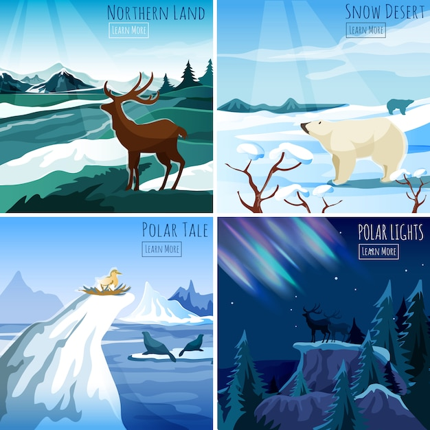 Northern landscape 4 flat icons square Free Vector