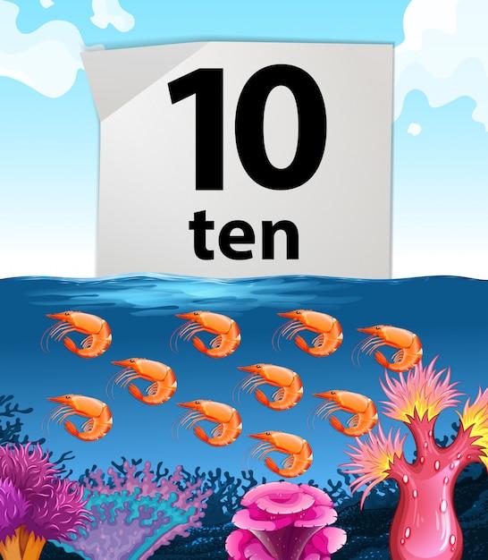 Number ten and ten shrimps underwater Free Vector