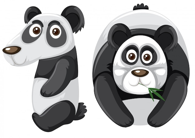Number ten with panda character Free Vector