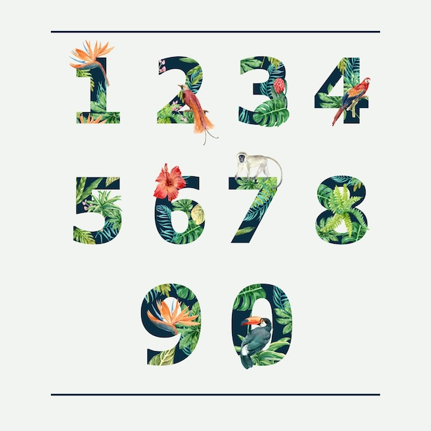 Number tropical alphabet typographic summer with plants foliage Free Vector