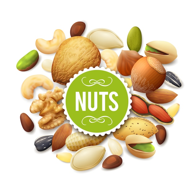 Nut collection illustration Free Vector