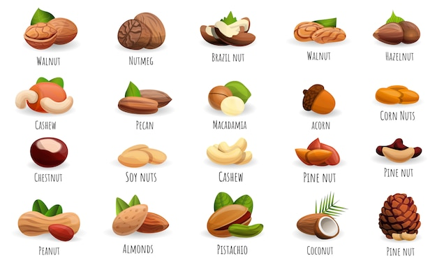 Nut icon set Premium Vector