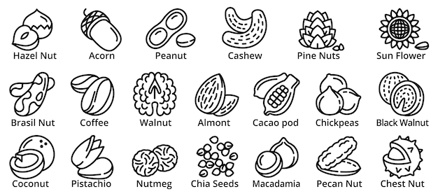 Nut icons set, outline style Premium Vector