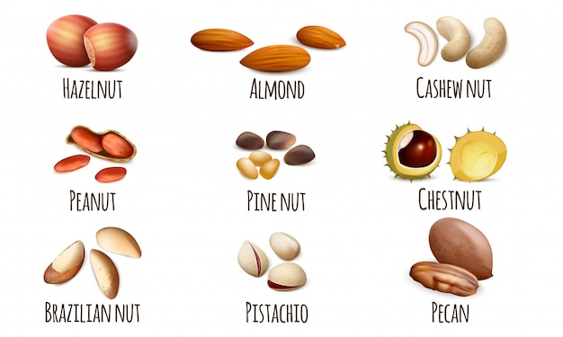 Nut icons set Premium Vector