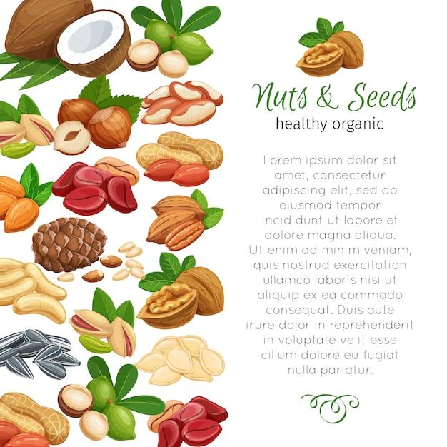 Орехи и семена Premium векторы