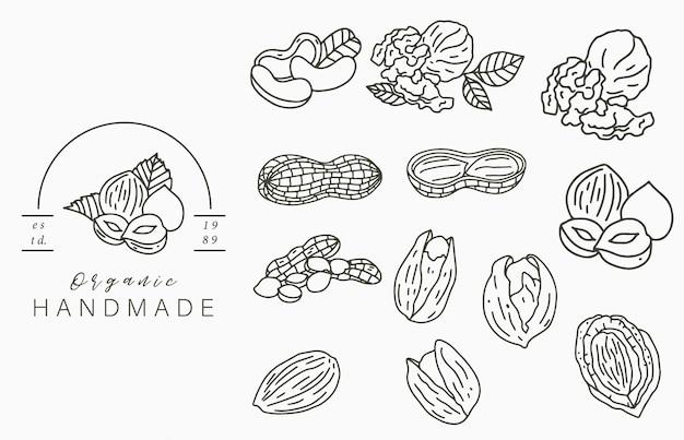Логотип коллекции орехов с лесным орехом, грецким орехом, арахисом. векторная иллюстрация для значка, логотипа, наклейки, печати и татуировки Premium векторы