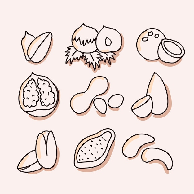 Nuts, dried fruits set of icon. hand draw Premium Vector