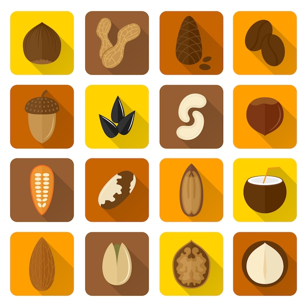 Nuts icons set Free Vector