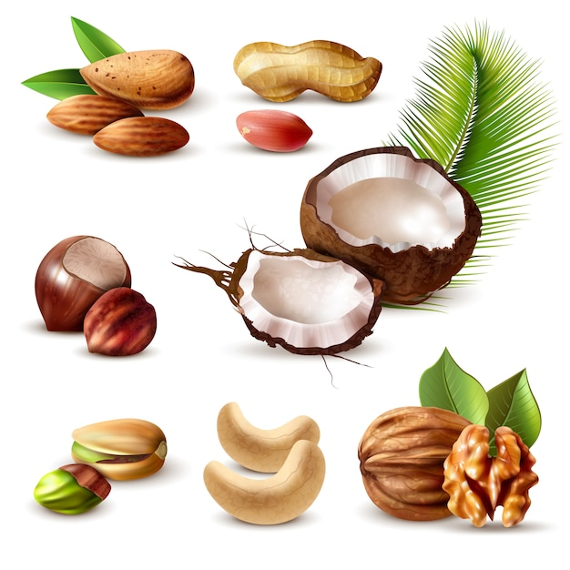 Nuts realistic set Free Vector