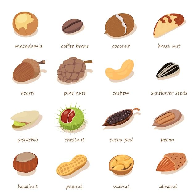 Nuts and seeds icons set. isometric illustration of 16nnuts and seeds vector icons for web Premium Vector