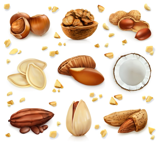 Nuts in the shell, vector icon set Premium Vector