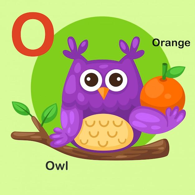 イラスト分離動物アルファベット文字o-フクロウ、オレンジ Premiumベクター