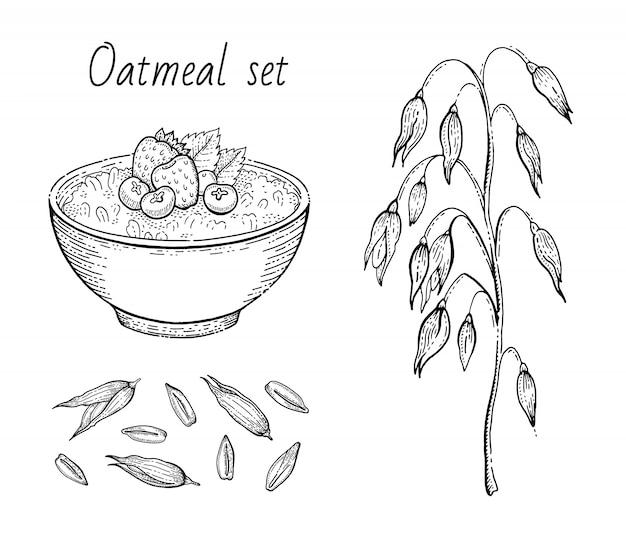 オート麦のスケッチ。オートミールポリッジボウル、ミルク、フルーツ、オート麦の耳、穀物。刻まれたアイコンアート。ラインミューズリー、健康的な甘い朝食フードデザインのフレーク。イラストセット。 Premiumベクター