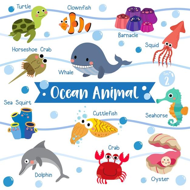 Image of: Pictures Ocean Animal Cartoon With Animal Name Premium Vector Freepik Ocean Animal Cartoon With Animal Name Vector Premium Download