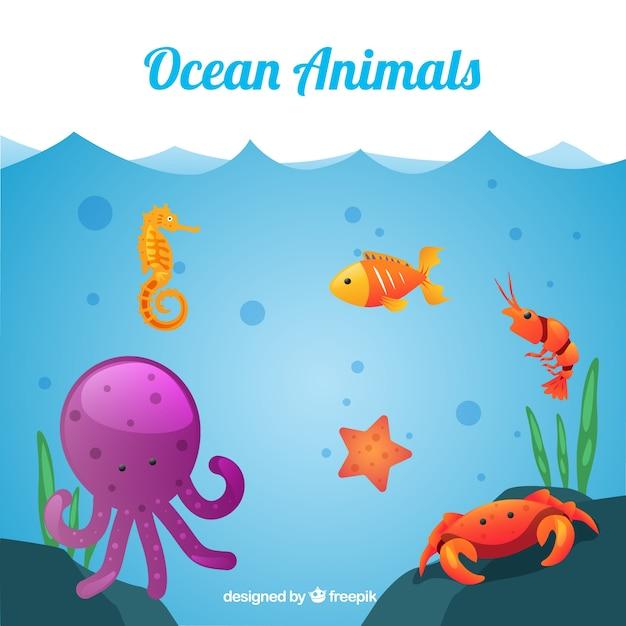 Sea Life Vectors, Photos and PSD files   Free Download