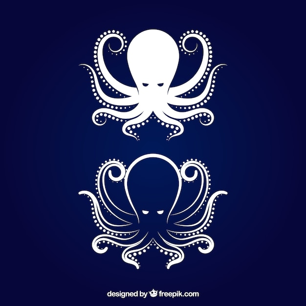 Octopus icon Free Vector
