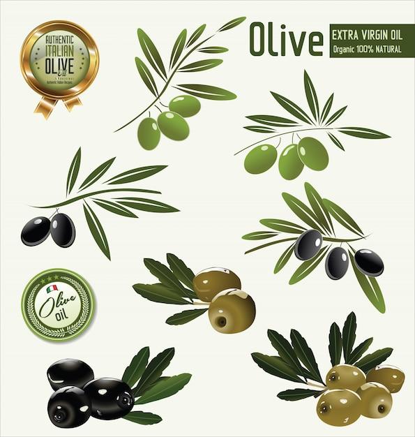 Olive background Premium Vector