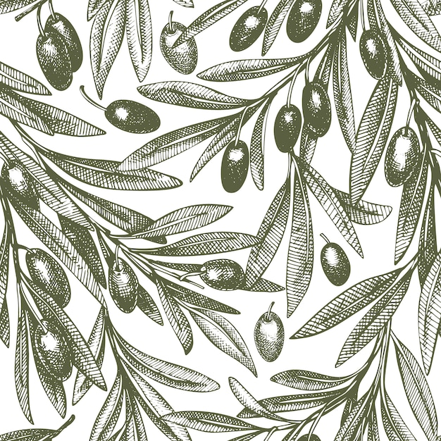 オリーブの枝のシームレスパターン Premiumベクター