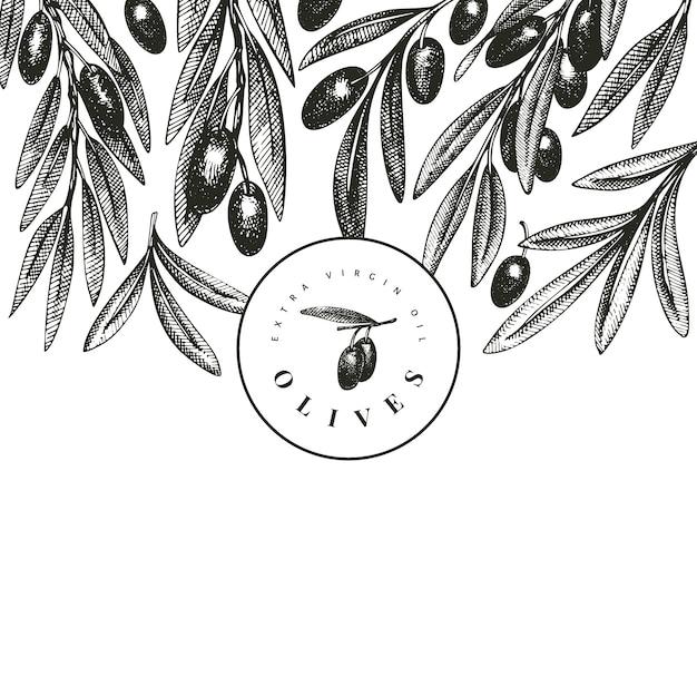 オリーブの枝のテンプレート。 Premiumベクター