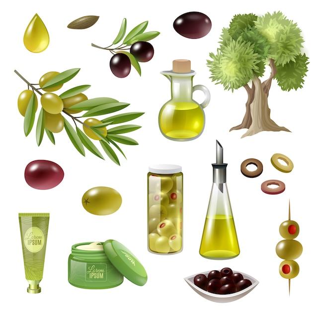 Olive cartoon set Free Vector