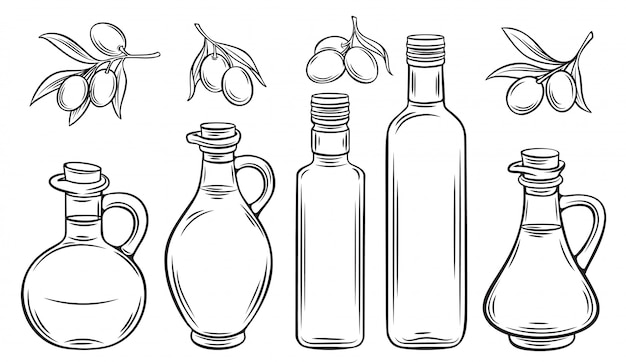 Olive oil and olives Premium Vector