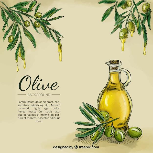 Olive oil sketch background Free Vector