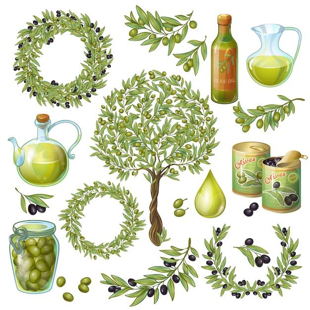 Olive organic elements set Free Vector