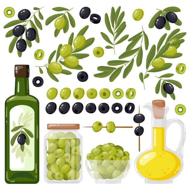オリーブの木の枝とエクストラバージンオリーブオイル Premiumベクター