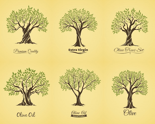 Premium Vector Olive Tree Silhouettes With Leaves And Branches