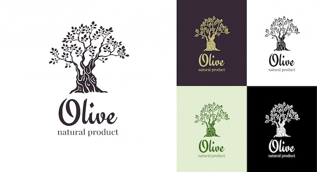 Olive tree vector logo design template for oil Premium Vector