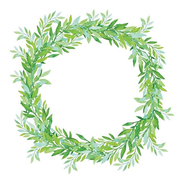 白い背景で隔離のオリーブの花輪。緑茶の木の葉。 Premiumベクター