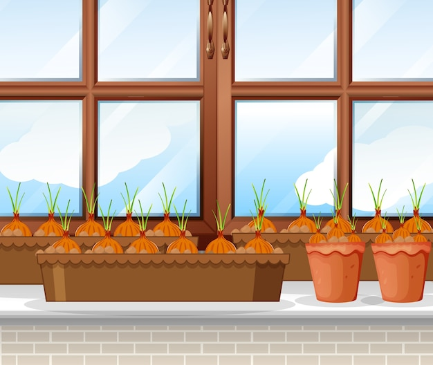 Луковые растения с окном фоновой сцены Бесплатные векторы