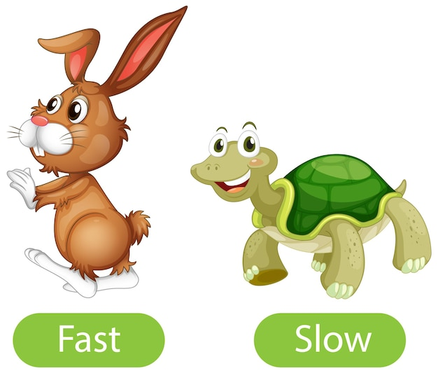 Opposite adjective words with fast and slow Free Vector