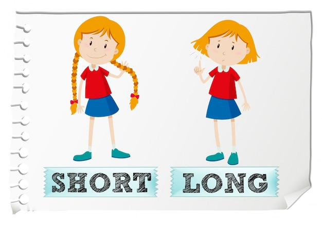 Opposite adjectives short and long Free Vector