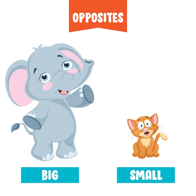 Premium Vector Opposite Adjectives With Cartoon Drawings