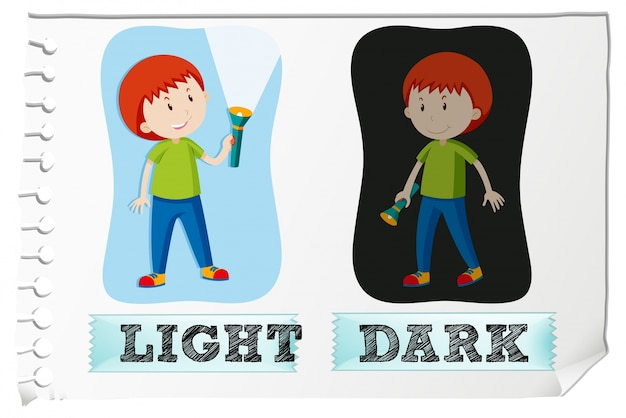 opposition of light and dark in Psych 370 chapter 2  the operating range rods are highly sensitive to light and cones have low sensitivity to light dark adaptation is just the opposite of this .