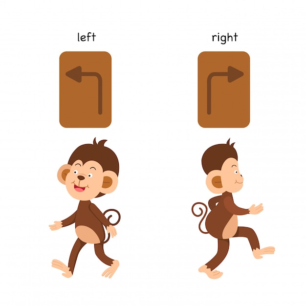 Opposite left and right vector illustration Premium Vector