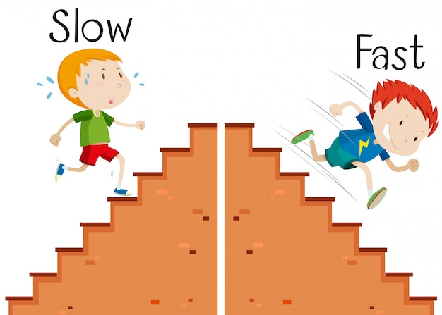 Opposite words slow and fast Free Vector