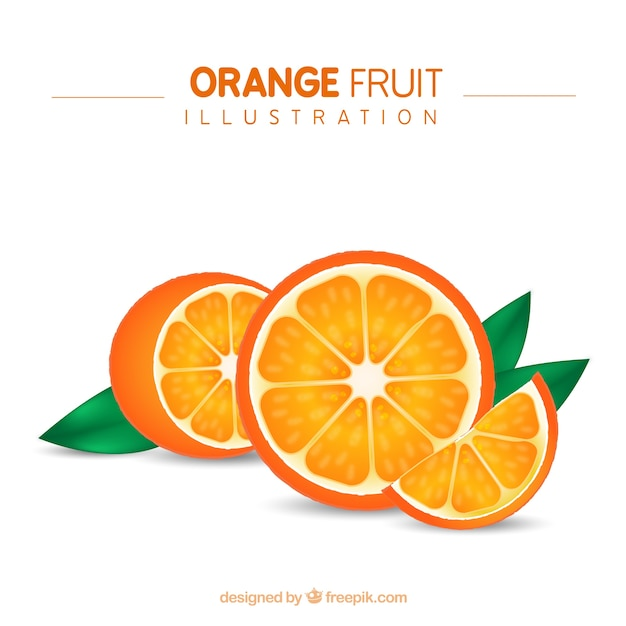 Orange fruit illustration Free Vector