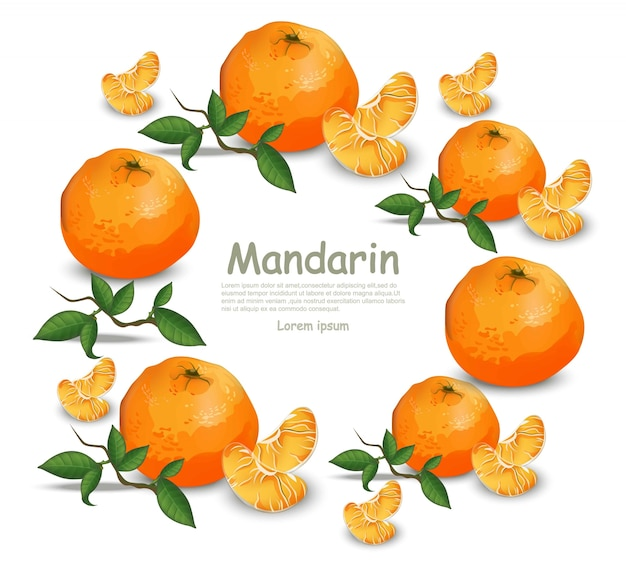 Orange fruit wreath round frame on white background Vector | Premium ...