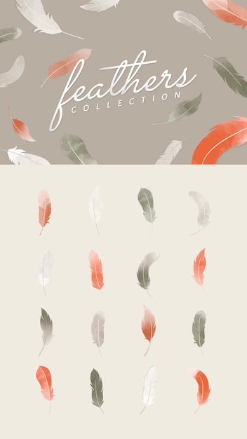 Orange and gray feathers Free Vector
